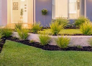Beautiful Landscape Gardens on the Gold Coast.