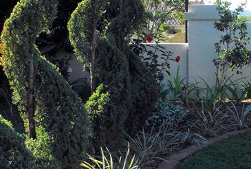 gardens-designs