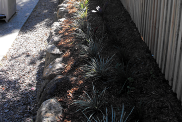 planting-gardens